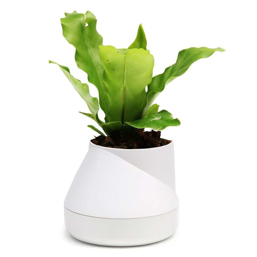 Горшок цветочный Hill Pot, маленький, белый QUALY QLX20001-WH